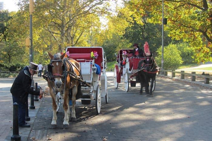 В карете по Центральному Парку в Нью-Йорке