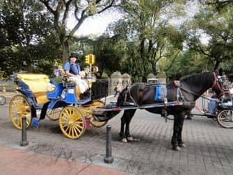 Прогулка в карете по Центральному Парку в Нью Йорке