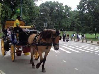 Прогулка в карете по Центральному Парку в Нью-Йорке