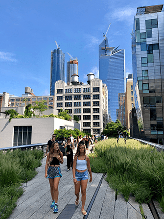 Хай-Лайн в Нью-Йорке - Лето