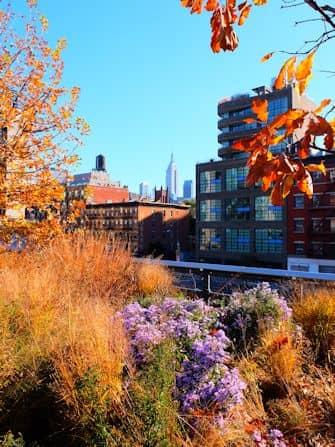 Хай-Лайн в Нью-Йорке - пейзаж