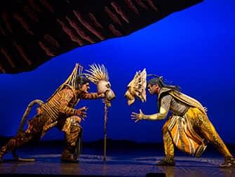 Мюзикл Lion King в Нью Йорке