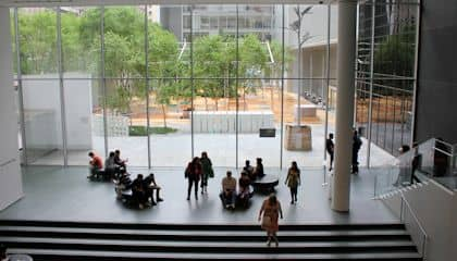 MoMA Museum of Modern Art - Сад