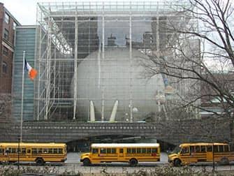 Museum of Natural History в Нью-Йорке