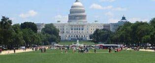 Однодневный тур в Вашингтон на автобусе из Нью-Йорка