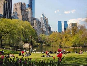 Парки в Нью-Йорке цнтральный парк