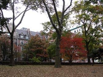 Парки в Нью-Йорке riverside-park